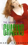 Chasing Ginger - mockup cover41