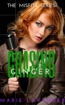 Chasing Ginger - mockup cover48