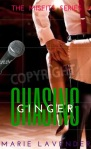 Chasing Ginger - mockup cover56