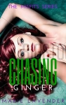 Chasing Ginger - mockup cover7