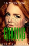 Chasing Ginger - mockup cover9
